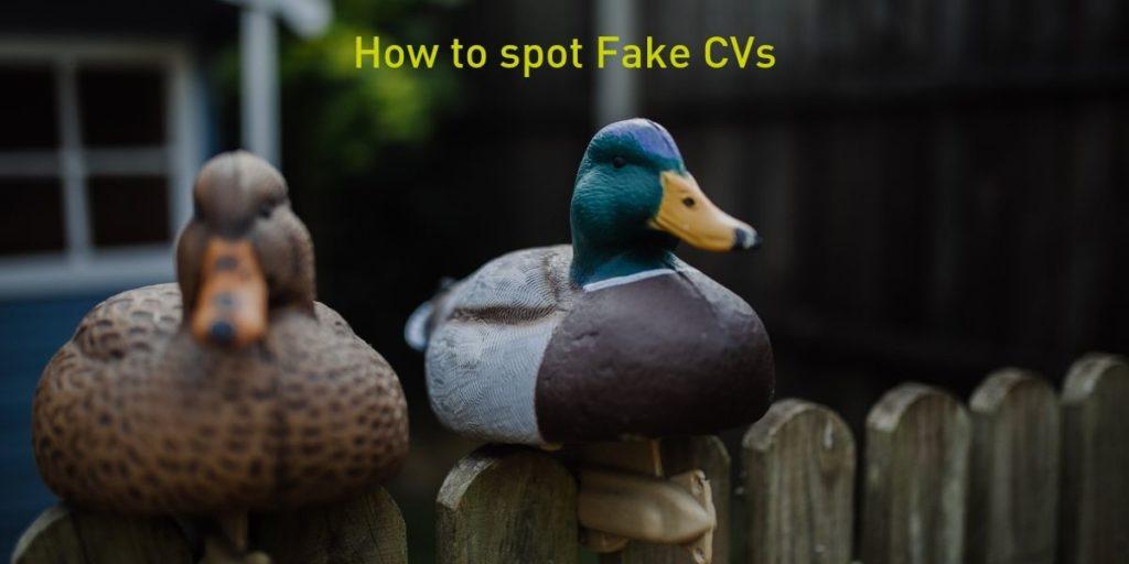 How to spot Fake CVs